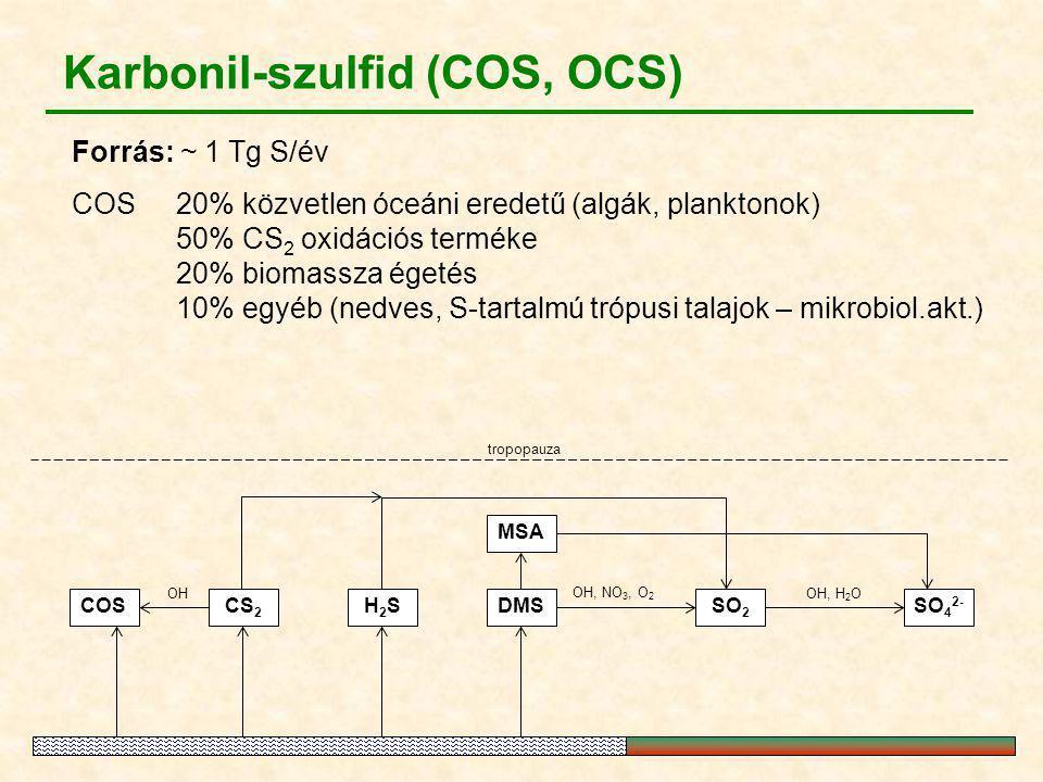 Karbonil-szulfid (COS, OCS) Forrás: ~ 1 Tg S/év COS20% közvetlen óceáni eredetű (algák, planktonok) 50% CS 2 oxidációs terméke 20% biomassza égetés 10