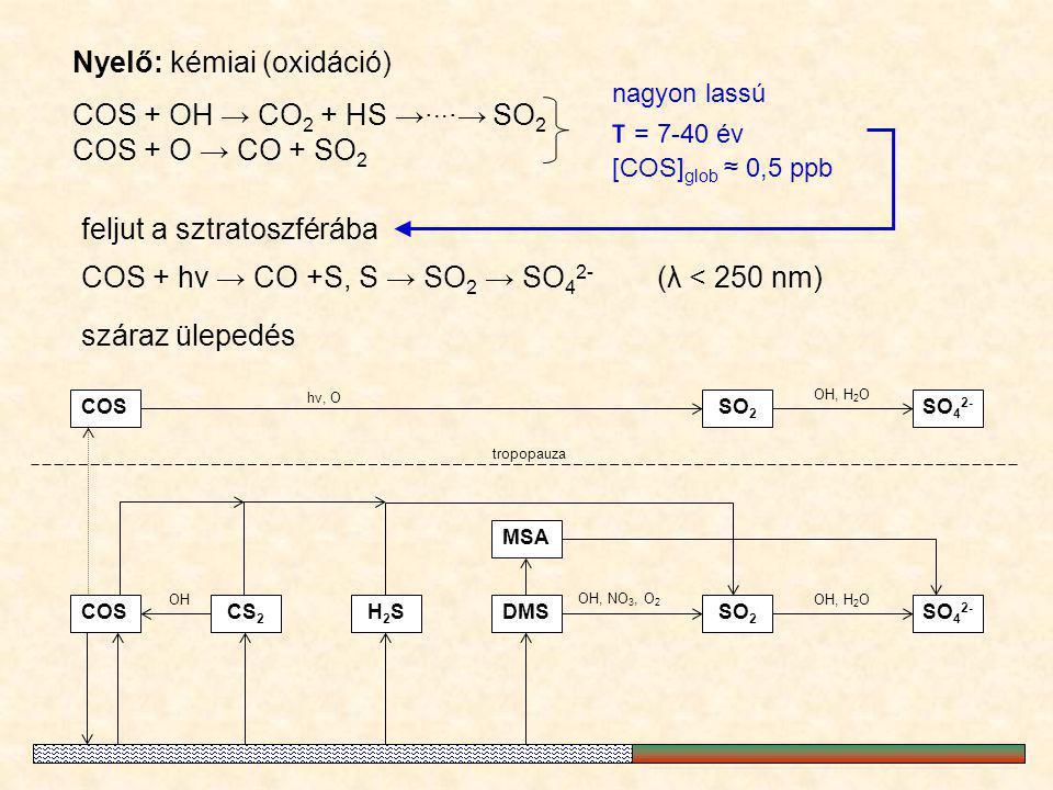 Nyelő: kémiai (oxidáció) COS + OH → CO 2 + HS →∙ ∙∙ ∙→ SO 2 COS + O → CO + SO 2 nagyon lassú τ = 7-40 év [COS] glob ≈ 0,5 ppb MSA SO 2 DMSCOS OH, NO 3