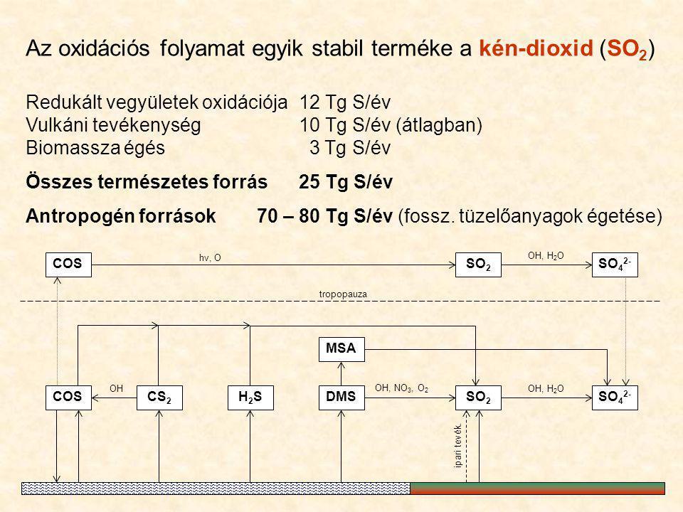 COSSO 2 SO 4 2- MSA SO 2 DMSCOS hν, O OH, NO 3, O 2 OH, H 2 O tropopauza CS 2 OH H2SH2SSO 4 2- ipari tevék. OH, H 2 O Az oxidációs folyamat egyik stab