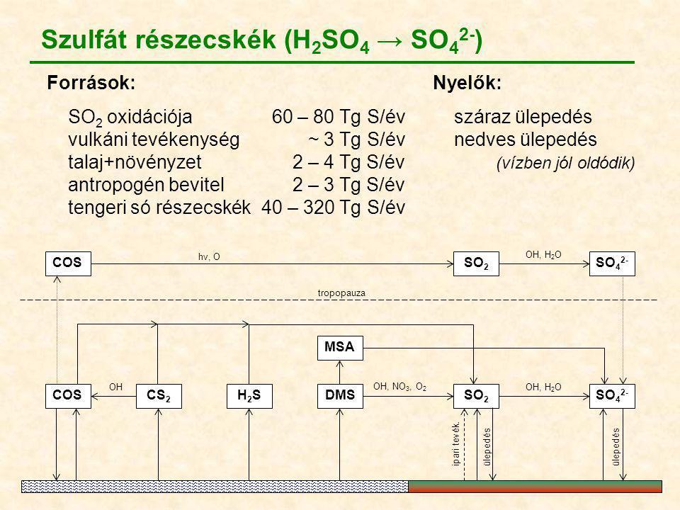 COSSO 2 SO 4 2- MSA SO 2 DMSCOS hν, O OH, NO 3, O 2 OH, H 2 O tropopauza CS 2 OH H2SH2SSO 4 2- ipari tevék. OH, H 2 O ülepedés Szulfát részecskék (H 2