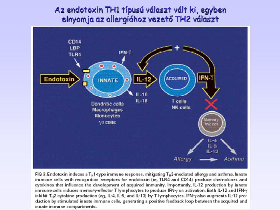 Az endotoxin TH1 típusú választ vált ki, egyben elnyomja az allergiához vezető TH2 választ