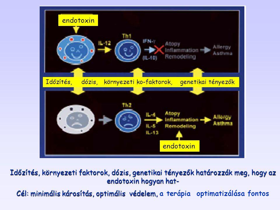 endotoxin Időzítés, környezeti faktorok, dózis, genetikai tényezők határozzák meg, hogy az endotoxin hogyan hat- Cél: minimális károsítás, optimális védelem, Cél: minimális károsítás, optimális védelem, a terápia optimatizálása fontos Időzítés, dózis, környezeti ko-faktorok, genetikai tényezők