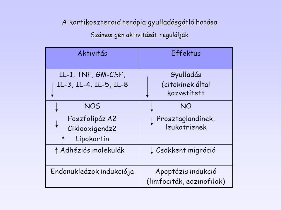 A kortikoszteroid terápia gyulladásgátló hatása Számos gén aktivitását regulálják AktivitásEffektus IL-1, TNF, GM-CSF, IL-3, IL-4. IL-5, IL-8 Gyulladá