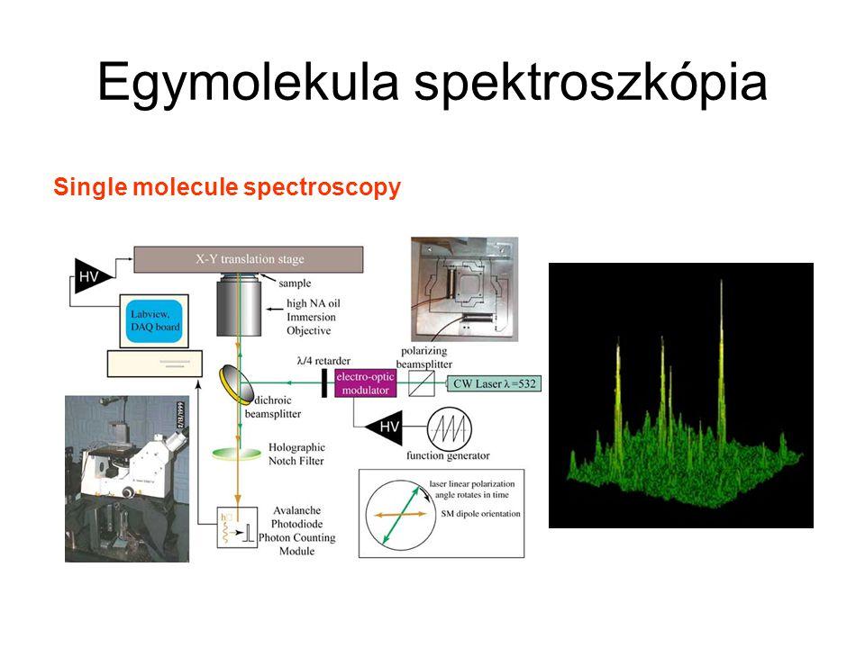 Egymolekula spektroszkópia Single molecule spectroscopy