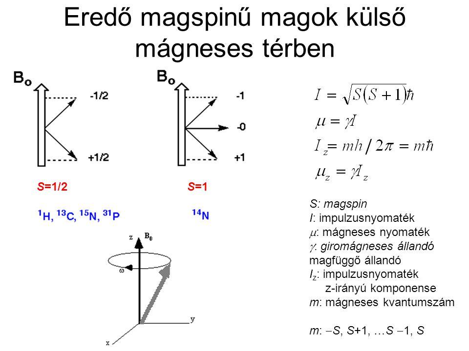 Eredő magspinű magok külső mágneses térben S: magspin I: impulzusnyomaték  : mágneses nyomaték  : giromágneses állandó magfüggő állandó I z : impulz