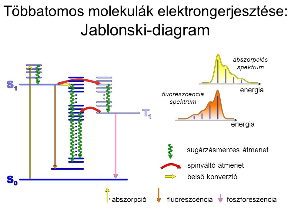 Többatomos molekulák elektrongerjesztése: Jablonski-diagram sugárzásmentes átmenet belső konverzió spinváltó átmenet abszorpciófluoreszcencia foszfore