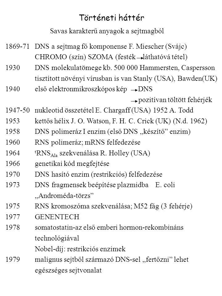 Savas karakterű anyagok a sejtmagból 1869-71DNS a sejtmag fő komponense F. Miescher (Svájc) CHROMO (szín) SZOMA (festék láthatóvá tétel) 1930DNS molek
