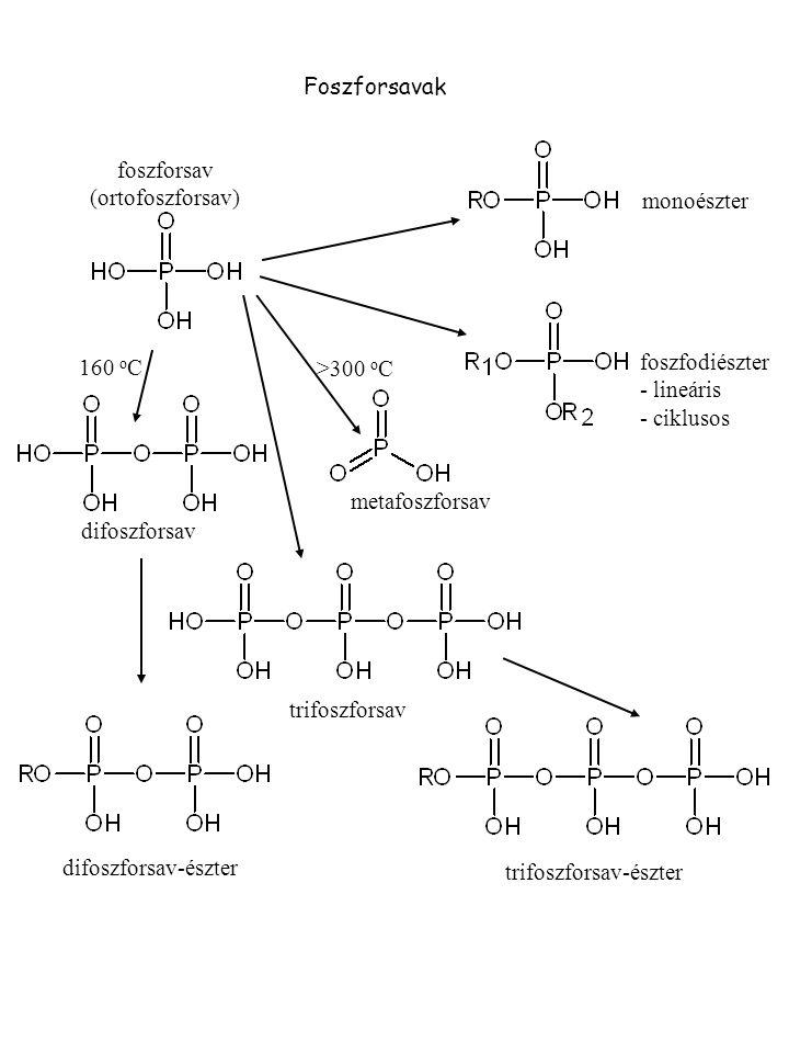 Foszforsavak monoészter foszfodiészter - lineáris - ciklusos >300 o C metafoszforsav difoszforsav 160 o C foszforsav (ortofoszforsav) trifoszforsav di
