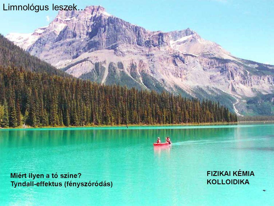 Limnológus leszek… Miért ilyen a tó színe? Tyndall-effektus (fényszóródás) FIZIKAI KÉMIA KOLLOIDIKA