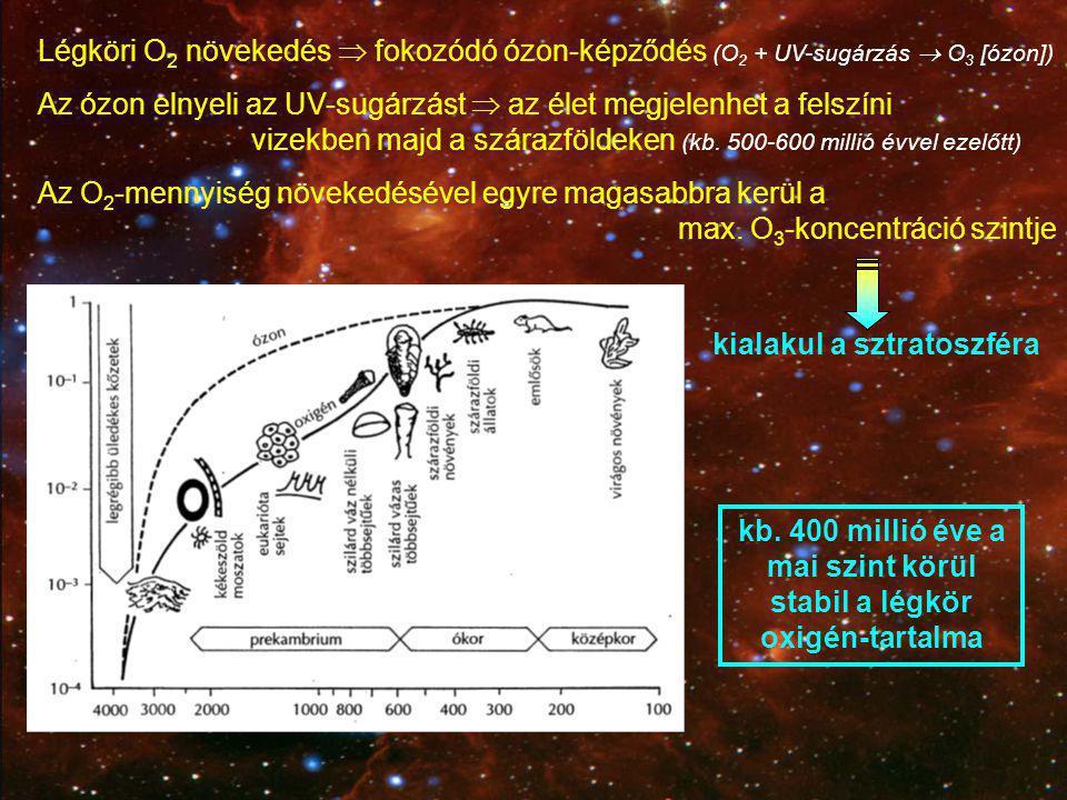 Légköri O 2 növekedés  fokozódó ózon-képződés (O 2 + UV-sugárzás  O 3 [ózon]) Az ózon elnyeli az UV-sugárzást  az élet megjelenhet a felszíni vizek