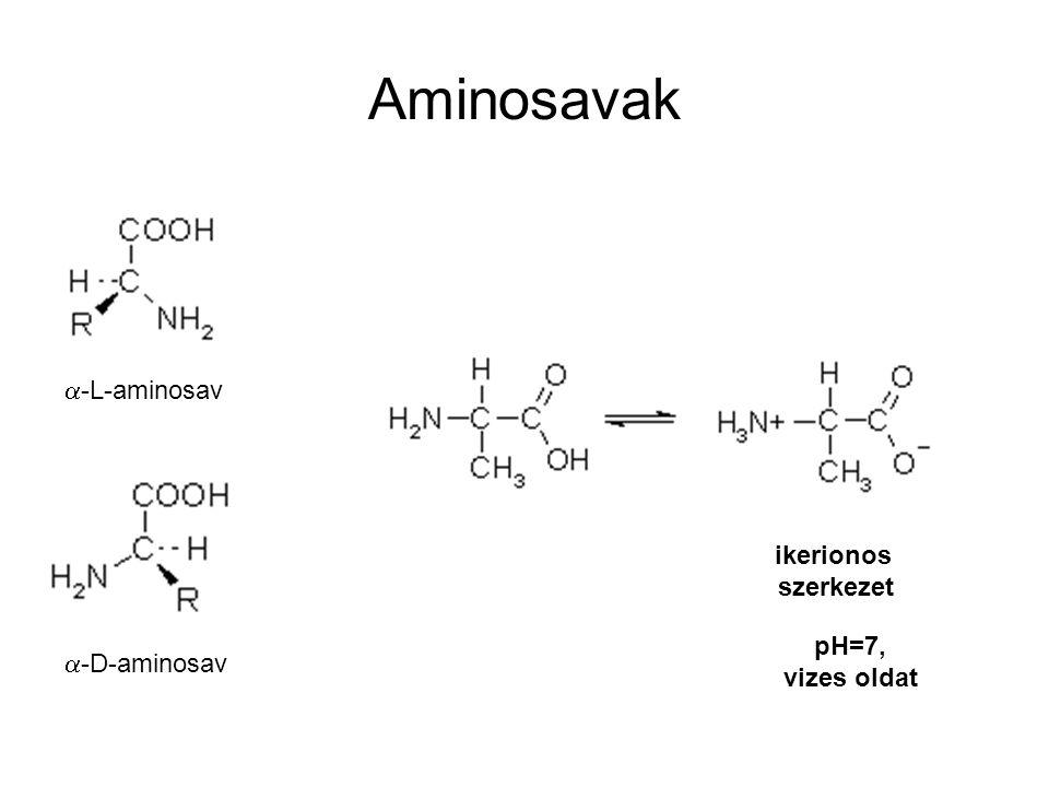Aminosavak  -L-aminosav  -D-aminosav ikerionos szerkezet pH=7, vizes oldat