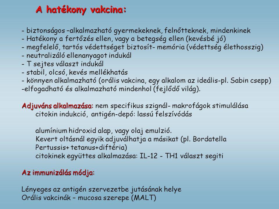A hatékony vakcina: - biztonságos –alkalmazható gyermekeknek, felnőtteknek, mindenkinek - Hatékony a fertőzés ellen, vagy a betegség ellen (kevésbé jó