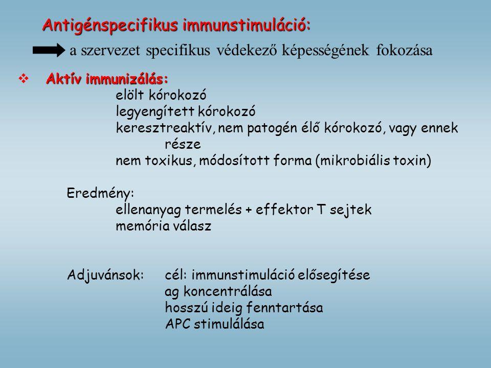 Antigénspecifikus immunstimuláció: Aktív immunizálás:  Aktív immunizálás: elölt kórokozó legyengített kórokozó keresztreaktív, nem patogén élő kóroko