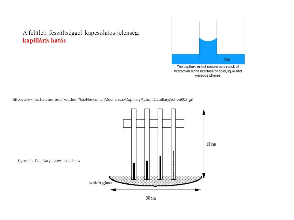 figure 1. Capillary tubes in action. http://www.fas.harvard.edu/~scdiroff/lds/NewtonianMechanics/CapillaryAction/CapillaryAction002.gif A felületi fes