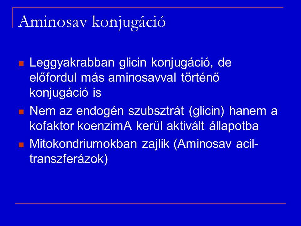 Aminosav konjugáció Leggyakrabban glicin konjugáció, de előfordul más aminosavval történő konjugáció is Nem az endogén szubsztrát (glicin) hanem a kof
