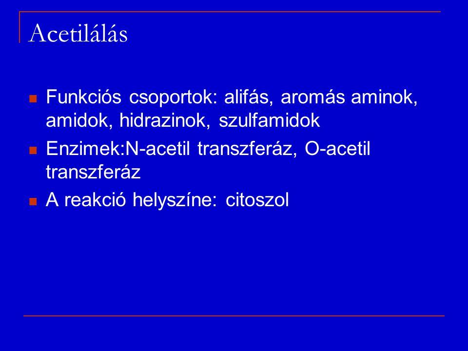 Acetilálás Funkciós csoportok: alifás, aromás aminok, amidok, hidrazinok, szulfamidok Enzimek:N-acetil transzferáz, O-acetil transzferáz A reakció hel