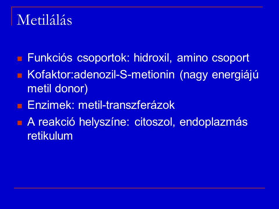 Metilálás Funkciós csoportok: hidroxil, amino csoport Kofaktor:adenozil-S-metionin (nagy energiájú metil donor) Enzimek: metil-transzferázok A reakció