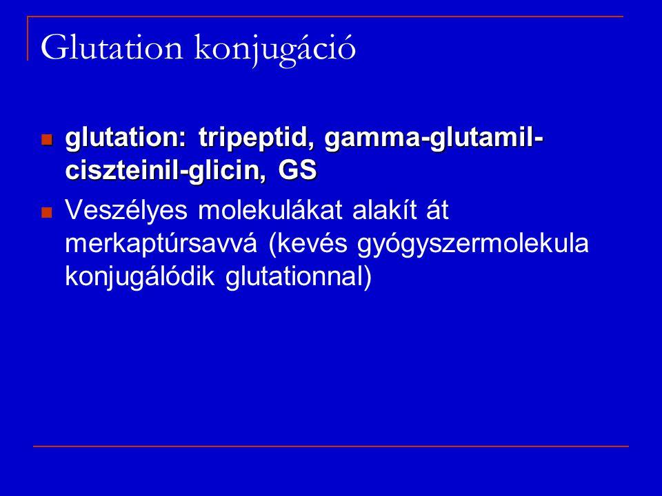 Glutation konjugáció glutation: tripeptid, gamma-glutamil- ciszteinil-glicin, GS glutation: tripeptid, gamma-glutamil- ciszteinil-glicin, GS Veszélyes