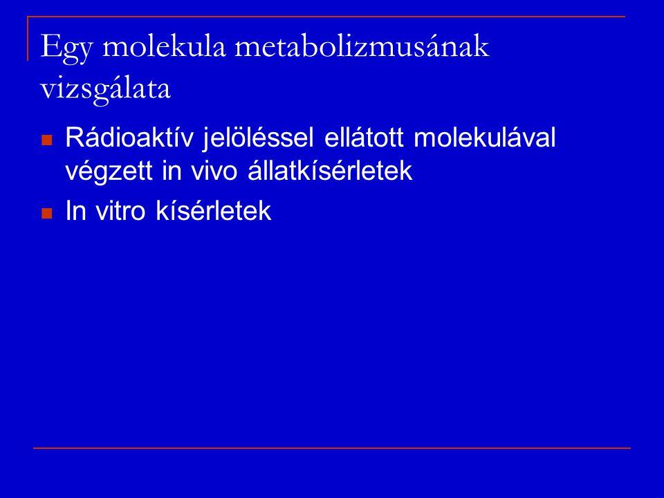 Egy molekula metabolizmusának vizsgálata Rádioaktív jelöléssel ellátott molekulával végzett in vivo állatkísérletek In vitro kísérletek