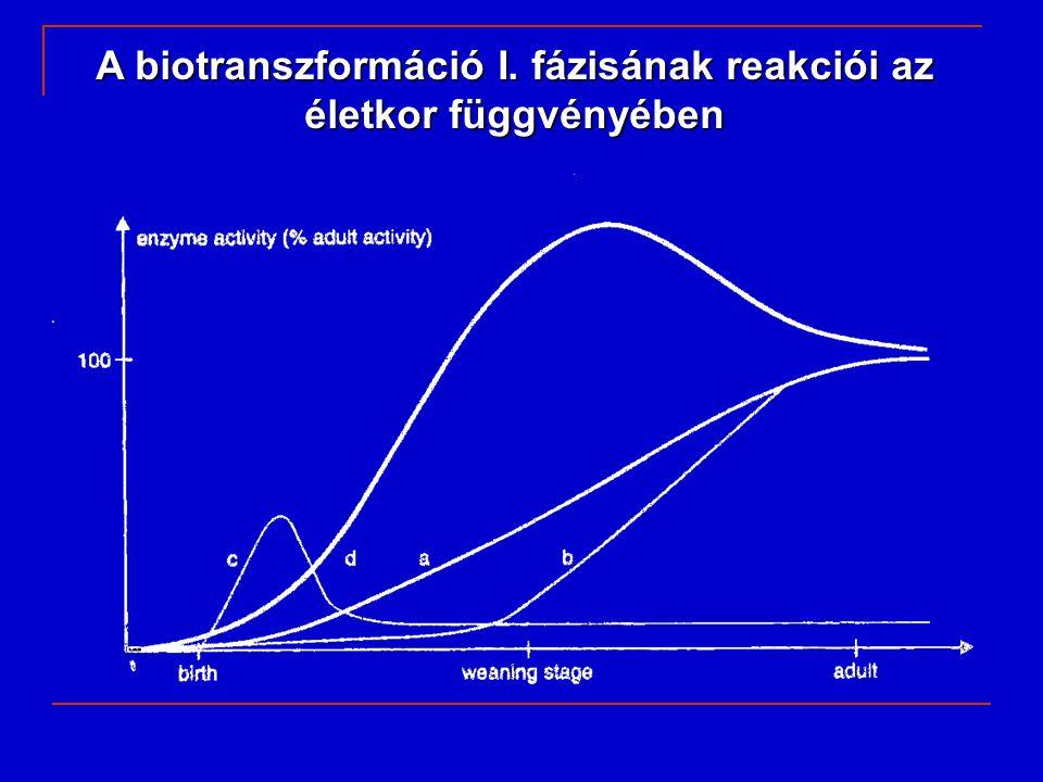 A biotranszformáció I. fázisának reakciói az életkor függvényében