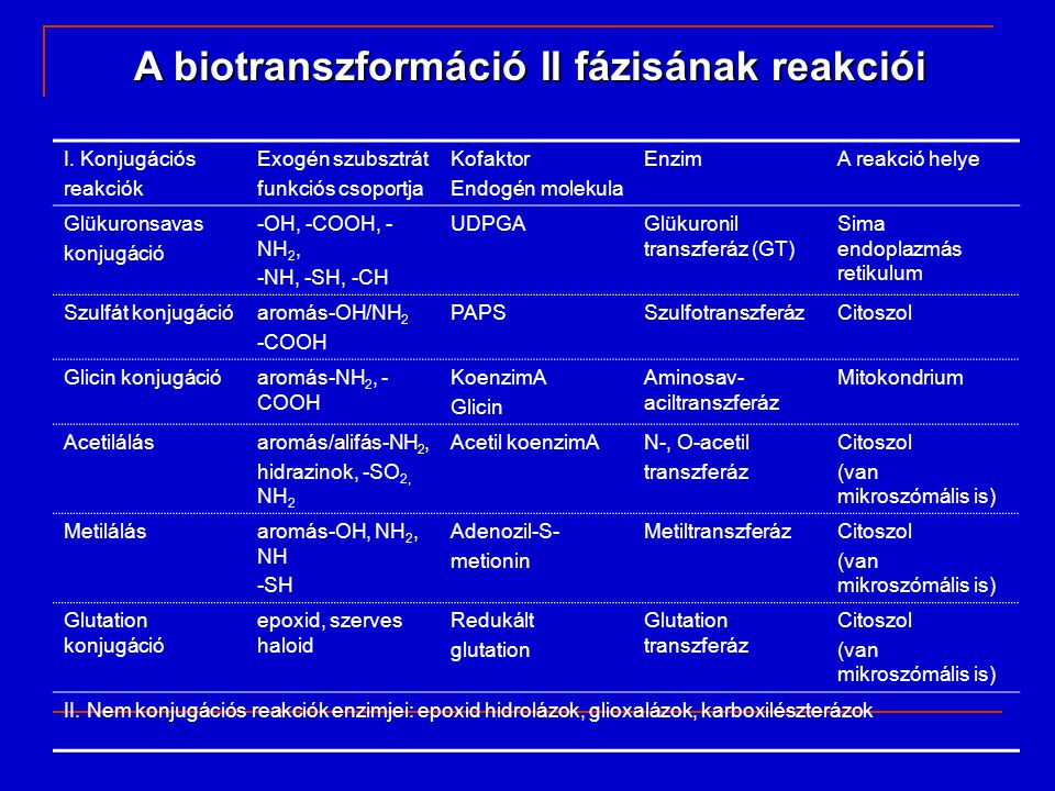 kofaktorokxenobiotikum A kevert funkciójú oxidáz rendszer elhelyezkedése a sima endoplazmás retikulumban fp1, fp2: flavoproteinek b5:citokróm b 5
