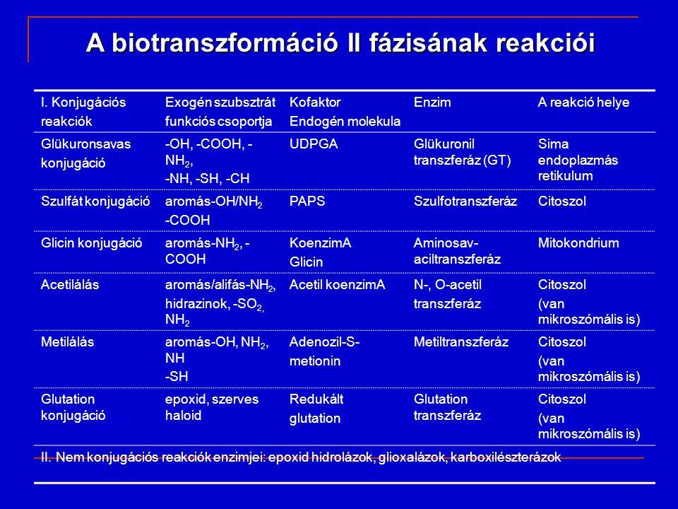 Glutation konjugáció glutation: tripeptid, gamma-glutamil- ciszteinil-glicin, GS glutation: tripeptid, gamma-glutamil- ciszteinil-glicin, GS Veszélyes molekulákat alakít át merkaptúrsavvá (kevés gyógyszermolekula konjugálódik glutationnal)