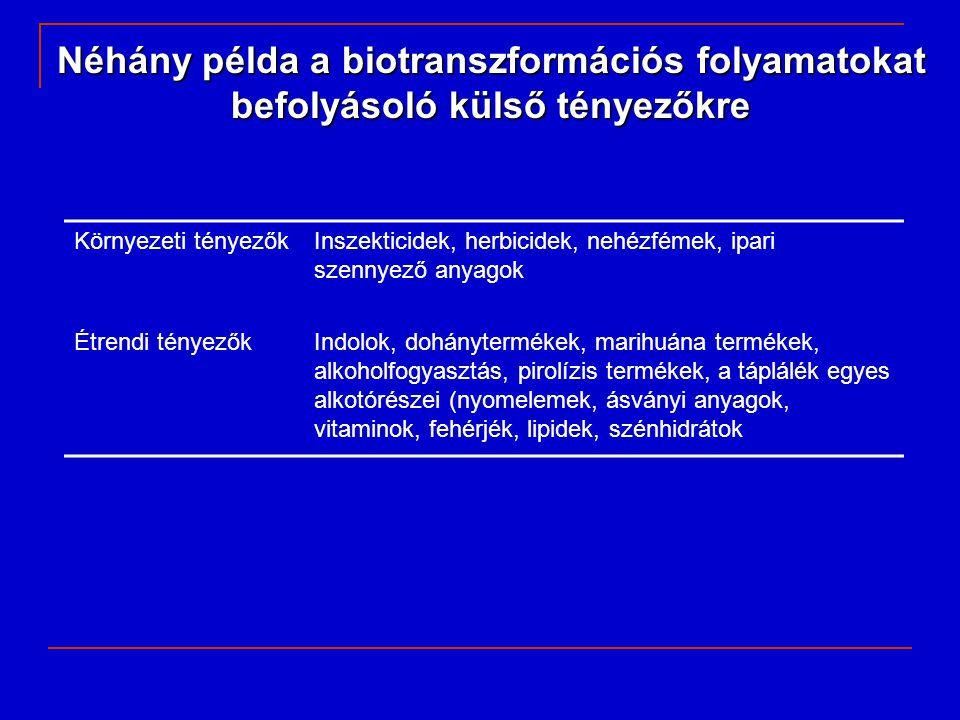 Néhány példa a biotranszformációs folyamatokat befolyásoló külső tényezőkre Környezeti tényezőkInszekticidek, herbicidek, nehézfémek, ipari szennyező