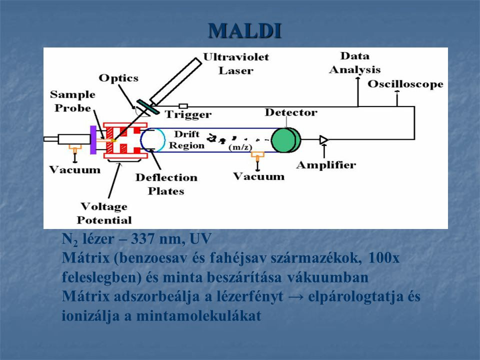 MALDI N 2 lézer – 337 nm, UV Mátrix (benzoesav és fahéjsav származékok, 100x feleslegben) és minta beszárítása vákuumban Mátrix adszorbeálja a lézerfényt → elpárologtatja és ionizálja a mintamolekulákat