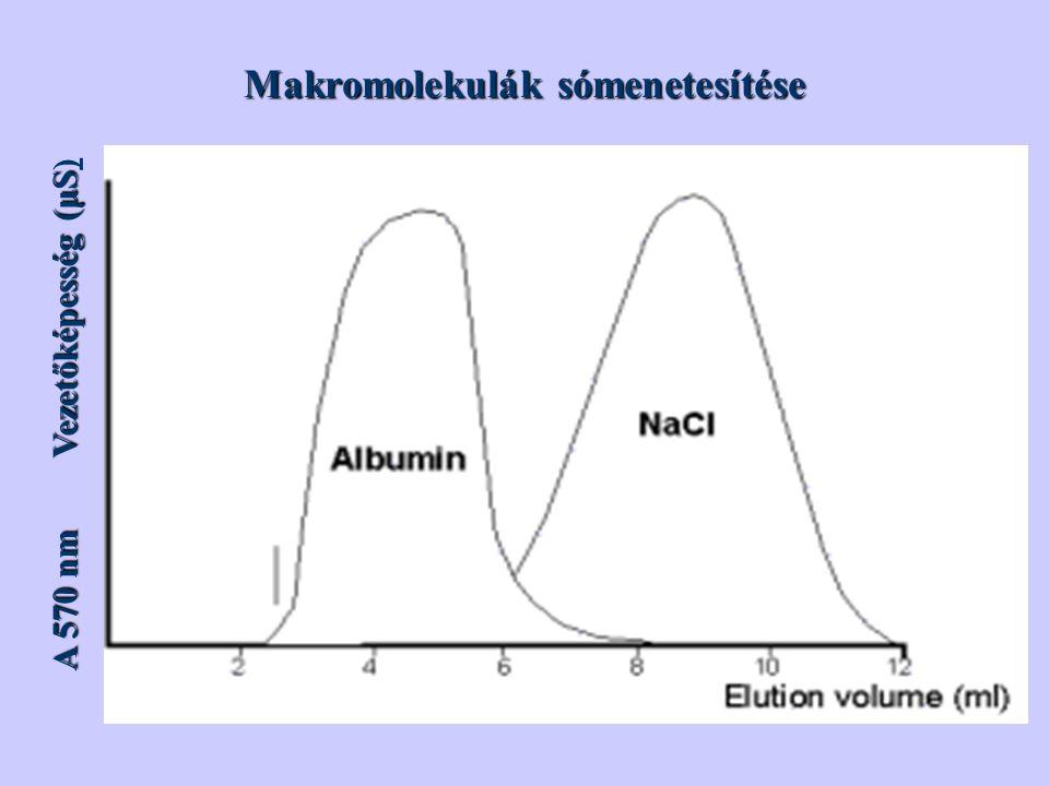 Makromolekulák sómenetesítése A 570 nm Vezetőképesség (μS Vezetőképesség (μS)