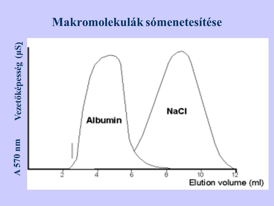 Makromolekulák sómenetesítése A 570 nm Vezetőképesség (μS)