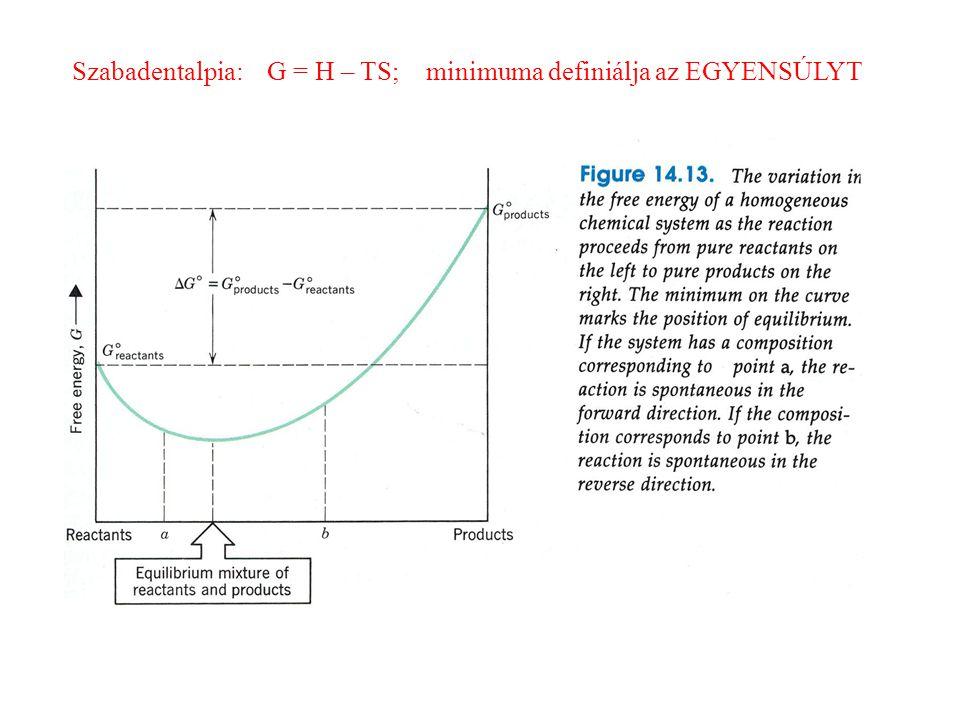 Szabadentalpia: G = H – TS; minimuma definiálja az EGYENSÚLYT