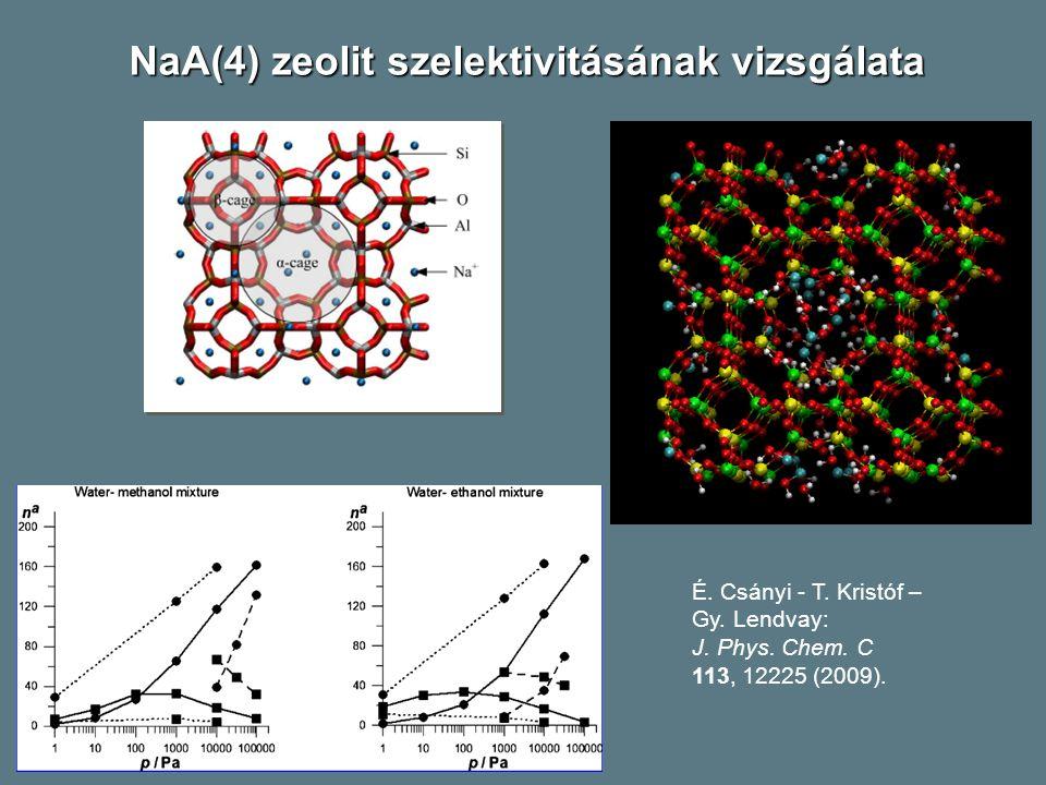 É.Csányi - T. Kristóf – Gy. Lendvay: J. Phys. Chem.