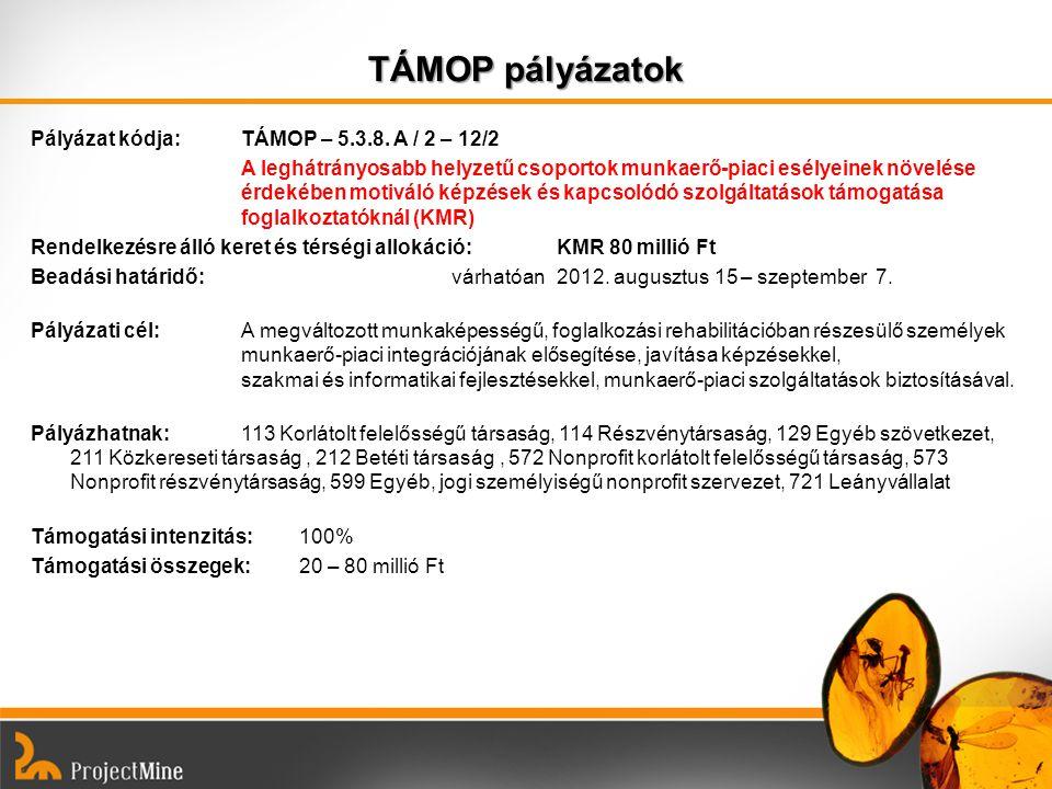 TÁMOP pályázatok Pályázat kódja: TÁMOP – 5.3.8. A / 2 – 12/2 A leghátrányosabb helyzetű csoportok munkaerő-piaci esélyeinek növelése érdekében motivál