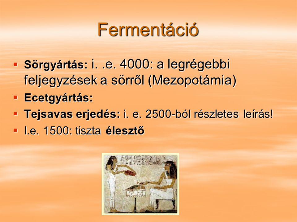Fermentáció  Sörgyártás: i..e. 4000: a legrégebbi feljegyzések a sörről (Mezopotámia)  Ecetgyártás:  Tejsavas erjedés: i. e. 2500-ból részletes leí