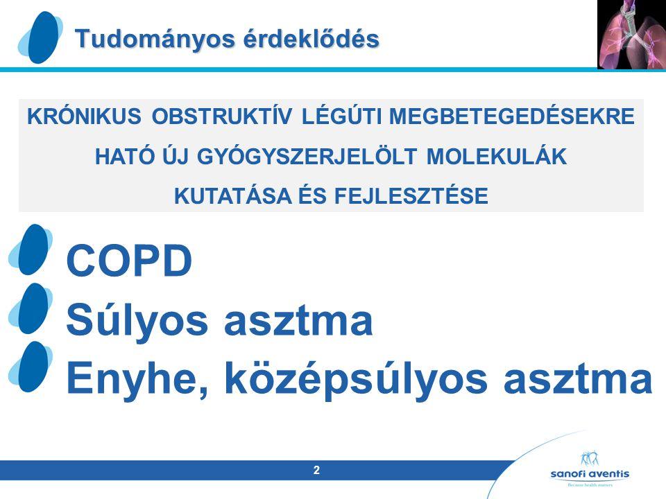 2 Tudományos érdeklődés COPD Súlyos asztma Enyhe, középsúlyos asztma KRÓNIKUS OBSTRUKTÍV LÉGÚTI MEGBETEGEDÉSEKRE HATÓ ÚJ GYÓGYSZERJELÖLT MOLEKULÁK KUTATÁSA ÉS FEJLESZTÉSE
