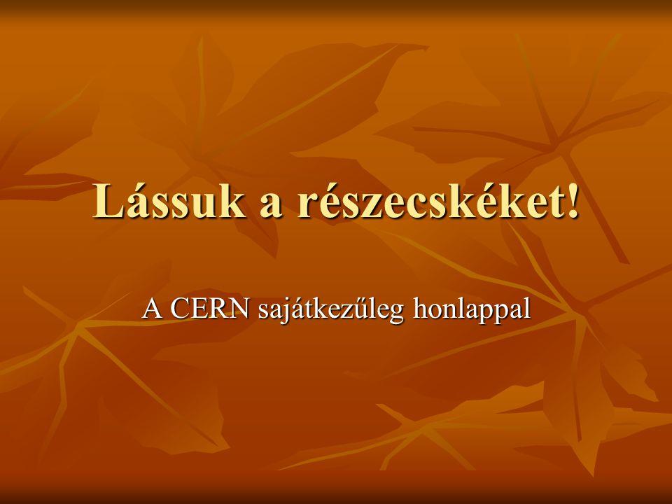 A mai nap programja (2009) 9.40 Megnyitó, szervezési kérdések 9.40 Megnyitó, szervezési kérdések 10-12 előadás szünettel 10-12 előadás szünettel ebéd