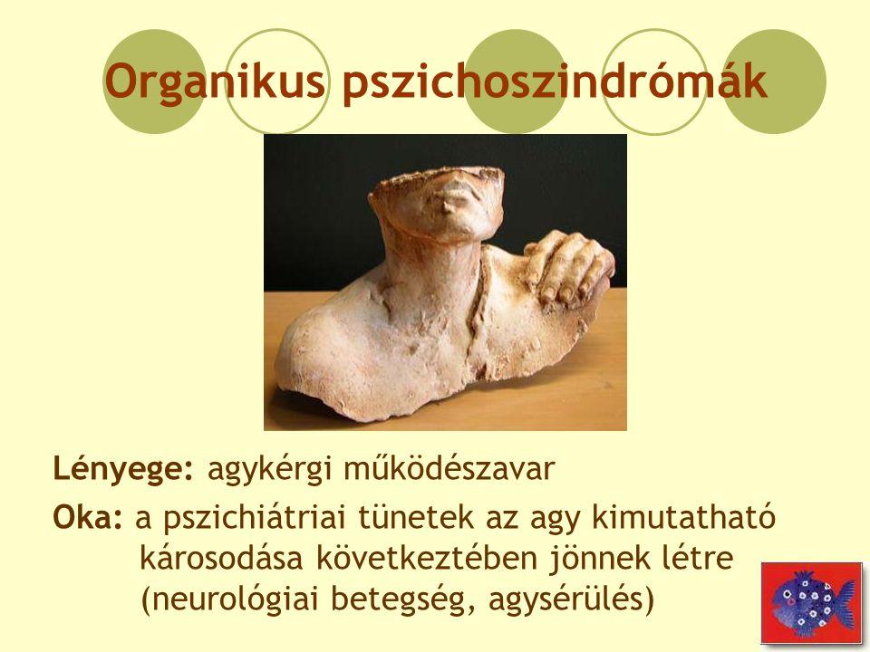 Organikus pszichoszindrómák Lényege: agykérgi működészavar Oka: a pszichiátriai tünetek az agy kimutatható károsodása következtében jönnek létre (neur