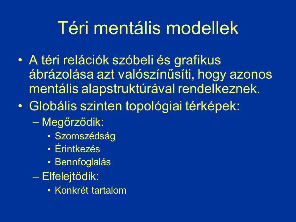 Téri mentális modellek A téri relációk szóbeli és grafikus ábrázolása azt valószínűsíti, hogy azonos mentális alapstruktúrával rendelkeznek. Globális