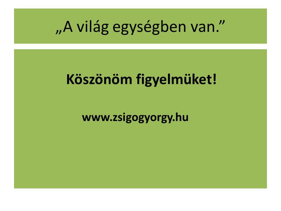 """""""A világ egységben van."""" Köszönöm figyelmüket! www.zsigogyorgy.hu"""