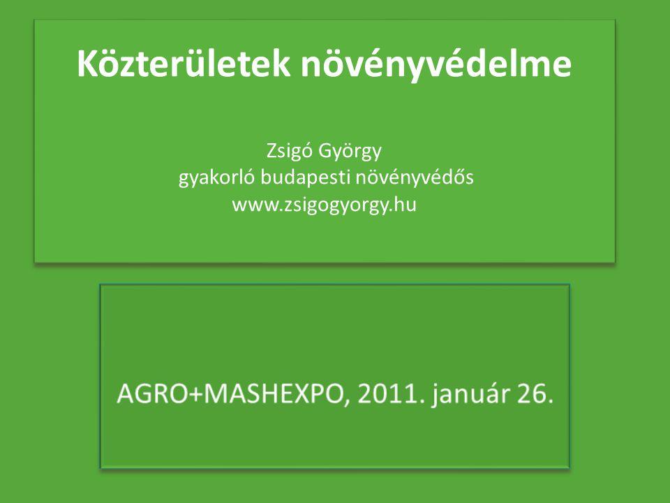 Közterületek növényvédelme Zsigó György gyakorló budapesti növényvédős www.zsigogyorgy.hu