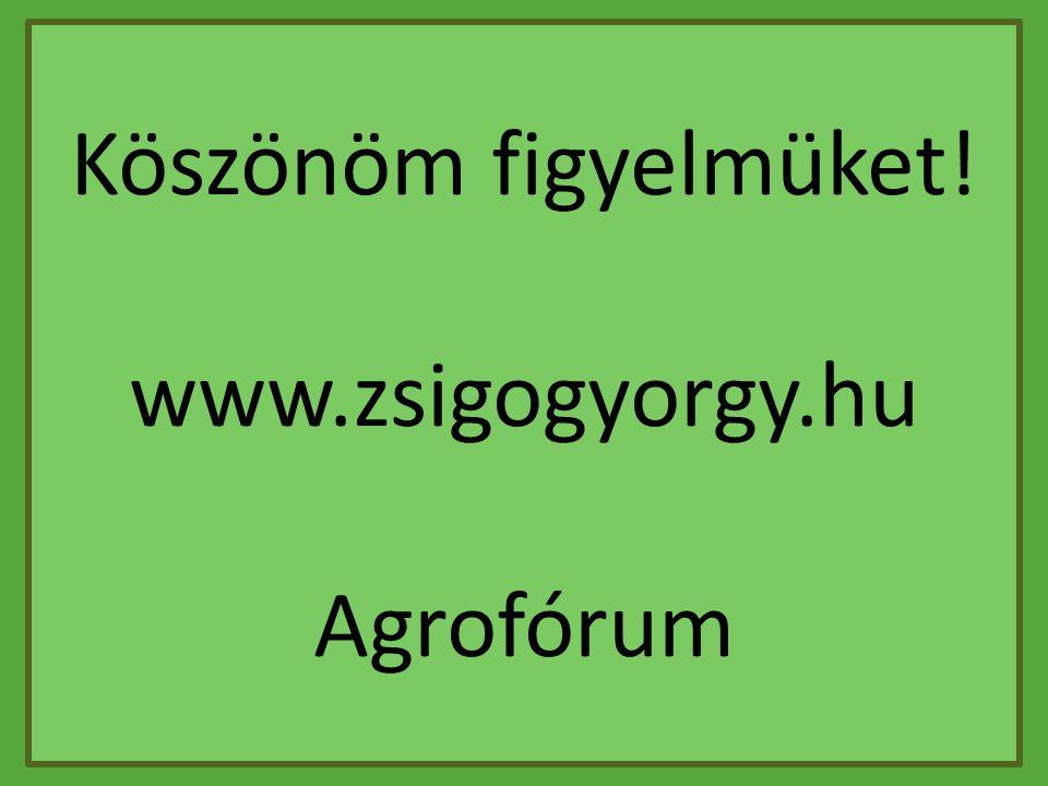 Köszönöm figyelmüket! www.zsigogyorgy.hu Agrofórum