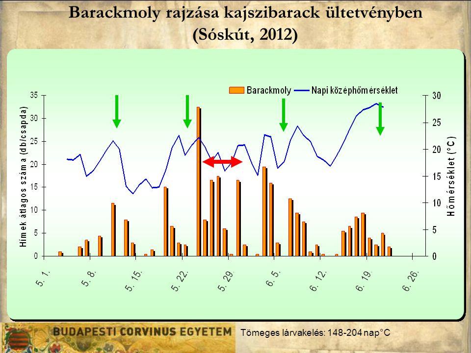 Barackmoly rajzása kajszibarack ültetvényben (Sóskút, 2012) Tömeges lárvakelés: 148-204 nap°C