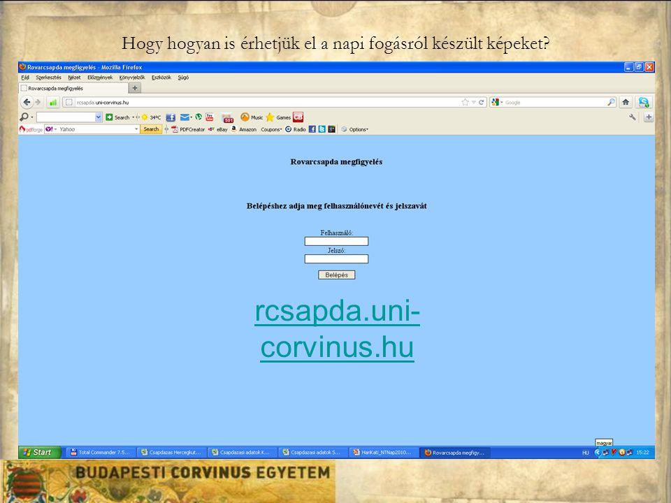 Hogy hogyan is érhetjük el a napi fogásról készült képeket? rcsapda.uni- corvinus.hu