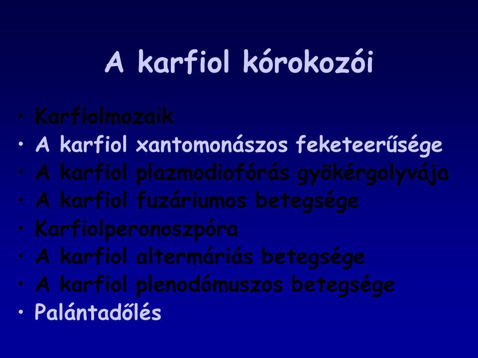 A karfiol kórokozói Karfiolmozaik A karfiol xantomonászos feketeerűsége A karfiol plazmodiofórás gyökérgolyvája A karfiol fuzáriumos betegsége Karfiol
