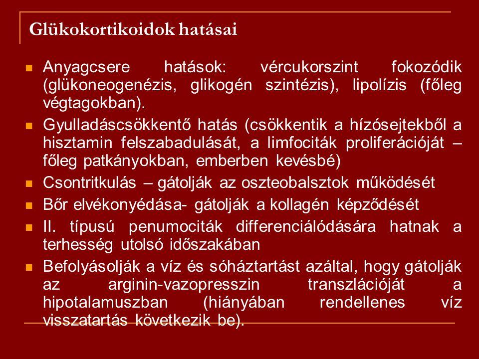 Glükokortikoidok hatásai Anyagcsere hatások: vércukorszint fokozódik (glükoneogenézis, glikogén szintézis), lipolízis (főleg végtagokban). Gyulladáscs
