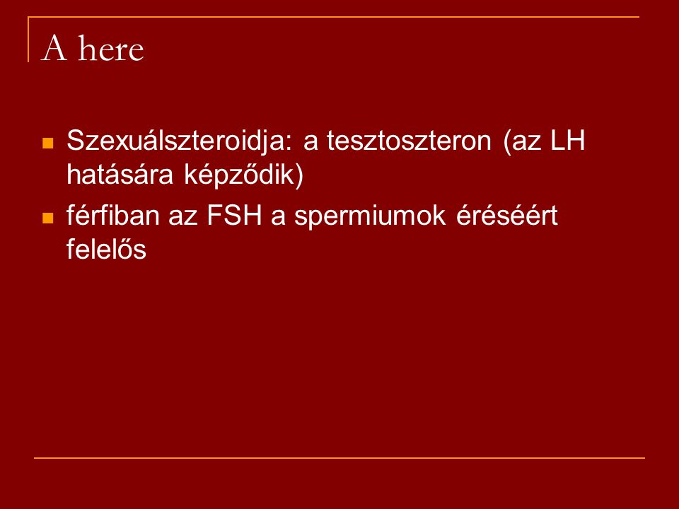 Szexuálszteroidja: a tesztoszteron (az LH hatására képződik) férfiban az FSH a spermiumok éréséért felelős