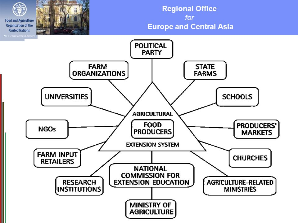 Regional Office for Europe and Central Asia