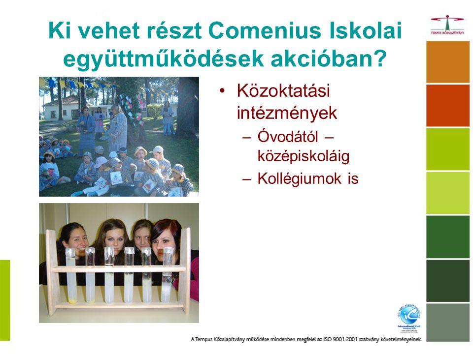 Miért érdemes egy Comenius projektben részt venni.