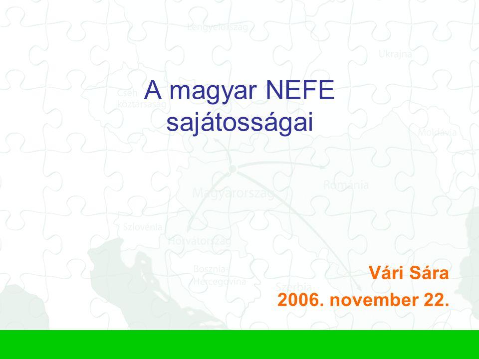 A magyar NEFE sajátosságai Vári Sára 2006. november 22.