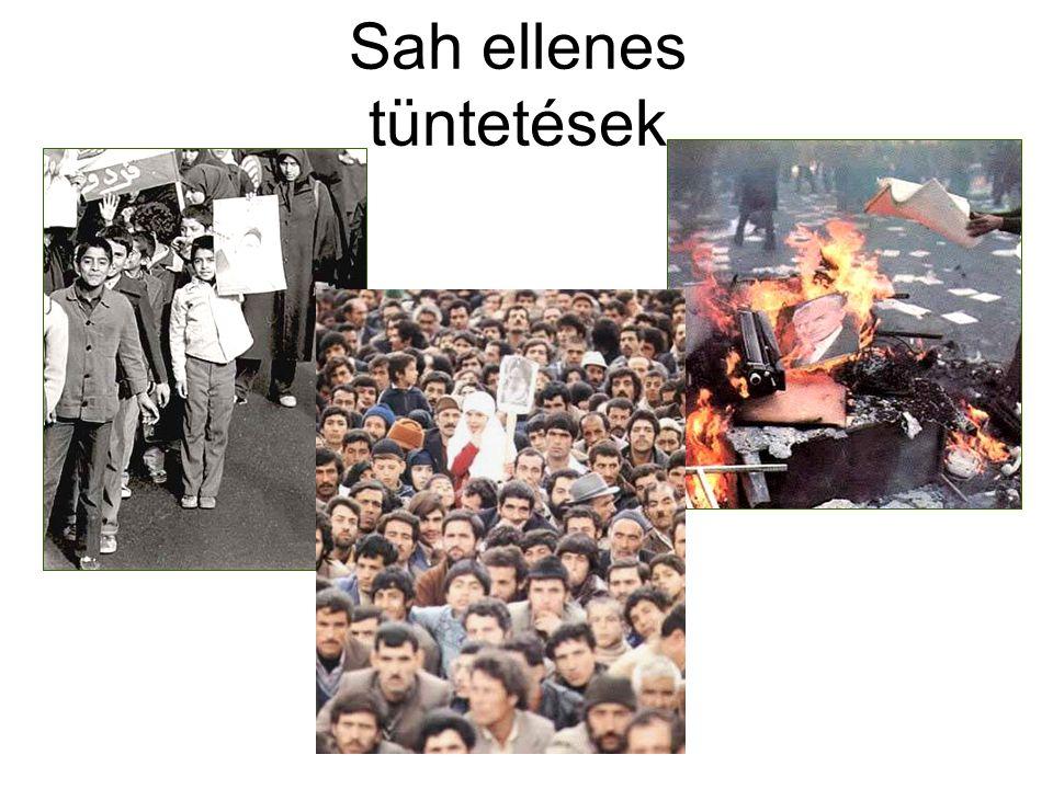 Sah ellenes tüntetések